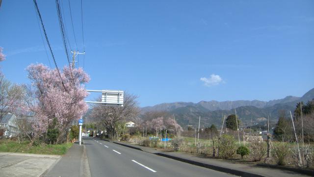 渋沢駅から大倉登山口まで走りました